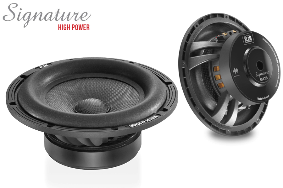 BLAM SIGNATURE High Power 200mm (8 inch) 300W 2 ohm subwoofer (SPECIAL ORDER PRODUCT)